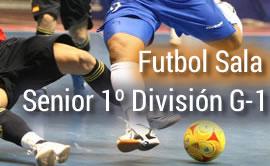 futbol_sala_seniorg1